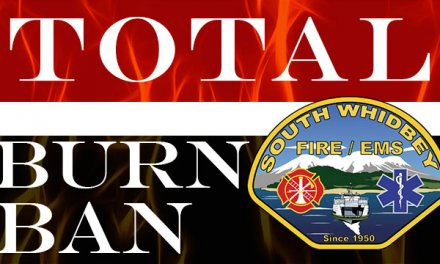 Type II Burn Ban In Effect August 3, 2017